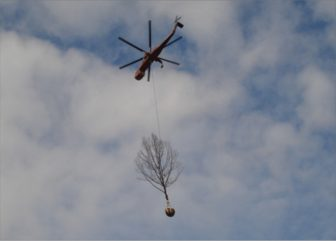 Kórejci presadili 1000 stromov, asistencia helikoptéry je u nich bežná