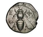 Báseň: Včela, ktorá neskôr vstala