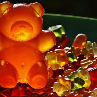 SEO a internetový marketing. Gumový medvedík.