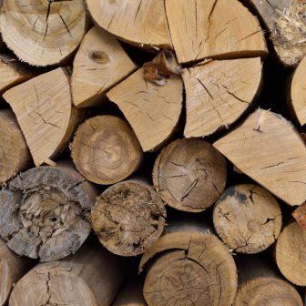 Použili sme fotku dreva, myslite si, čo chcete...