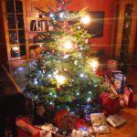 Antivianoce: Pol roka do Vianoc