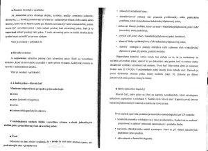 Diplomová práca - Metodika a technická norma 04