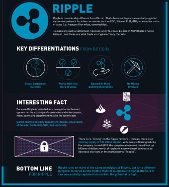 Ripple - infografika